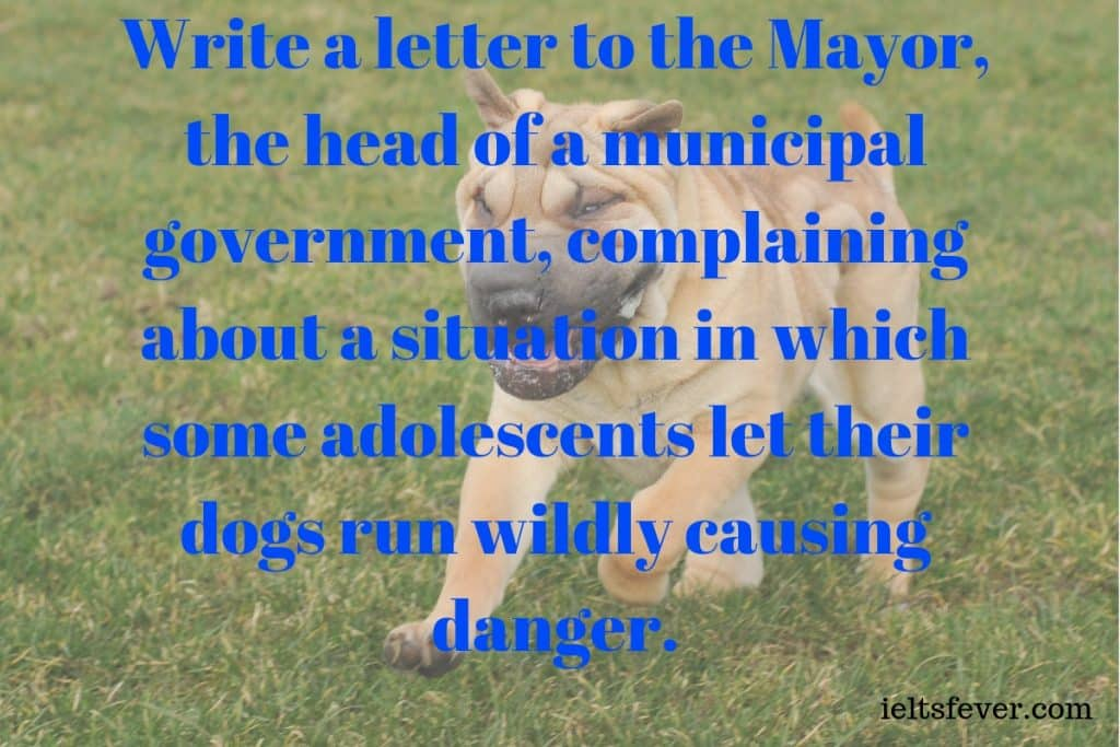 Write a letter to the Mayor, the head of a municipal government, complaining about a situation in which some adolescents let their dogs run wildly causing danger.And request him to enact a strict rule.