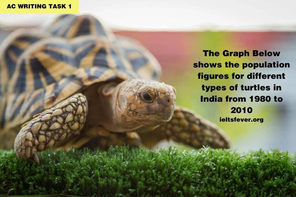 Population Figures for Different Types of Turtles in India