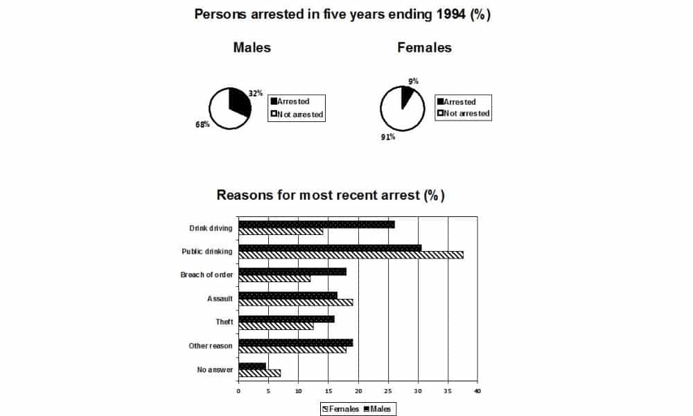 Pie Chart Shows the Percentage of Persons Arrested in the Five Years