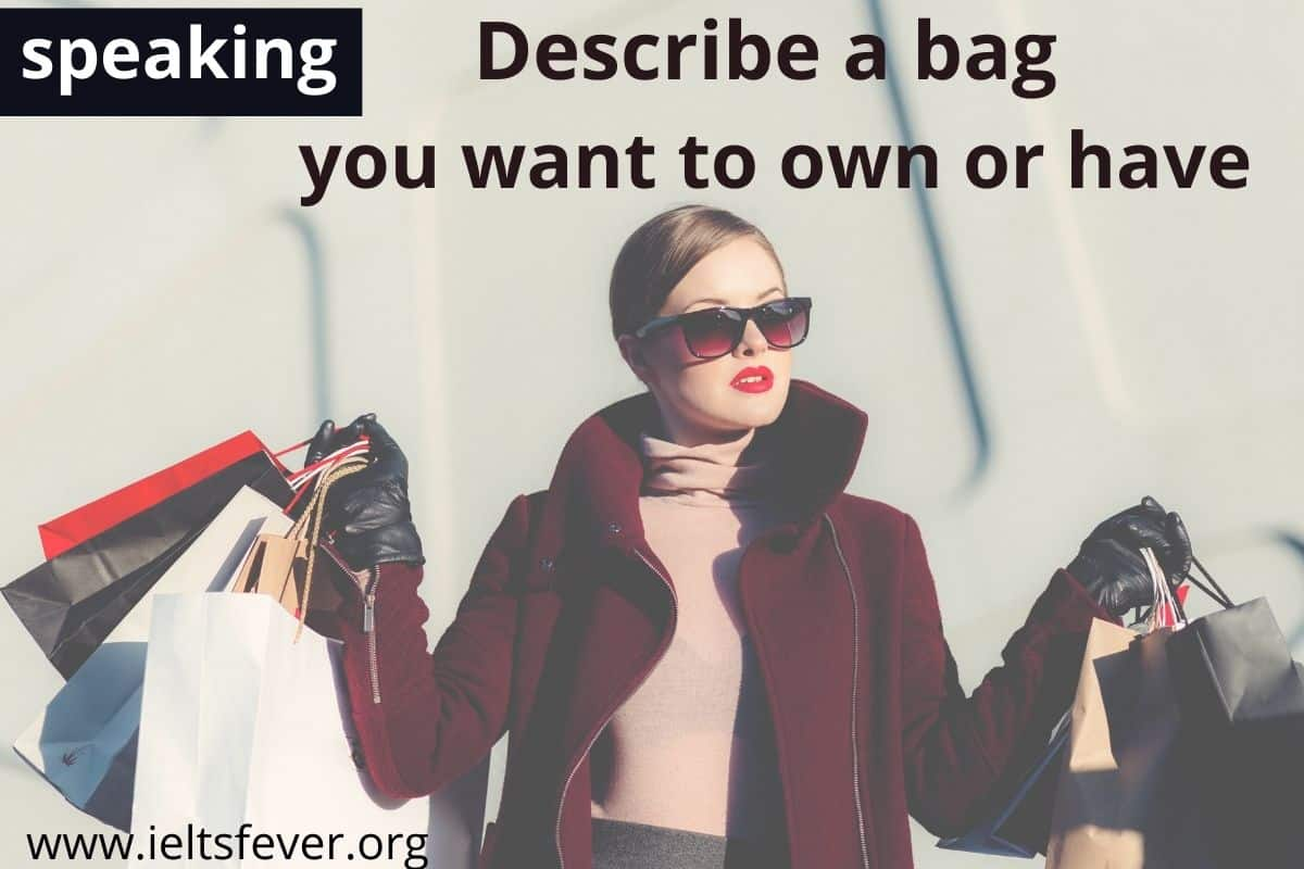 Describe a bag you want to own or have