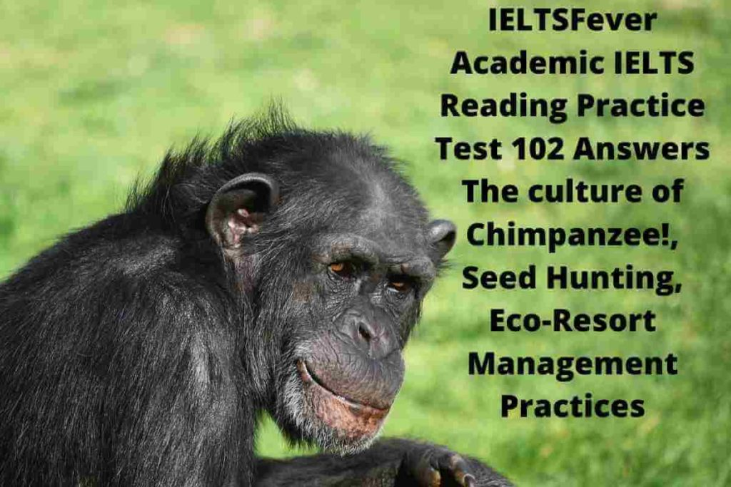 IELTSFever Academic IELTS Reading Practice Test 101 Answers The culture of Chimpanzee!, Seed Hunting, Eco-Resort Management Practices