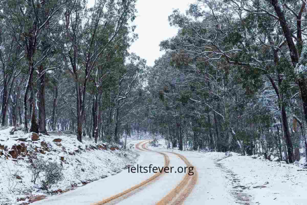You Are Organizing a Trip to the Snowy Mountains in New South Wales