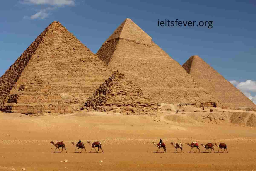 IELTSFever Academic IELTS Reading Test 150, Pulling strings to build pyramids , Is there a psychologist in the building?, The history of the tortoise