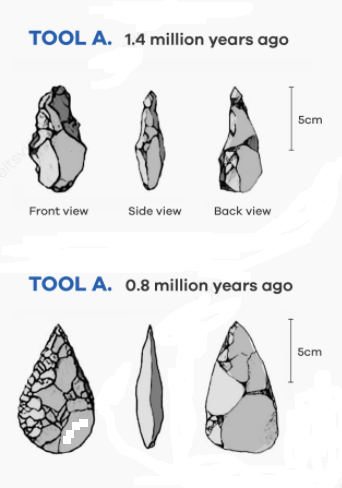 The diagrams below illustrate early tools from 1.4 million years ago and 800,000 years ago